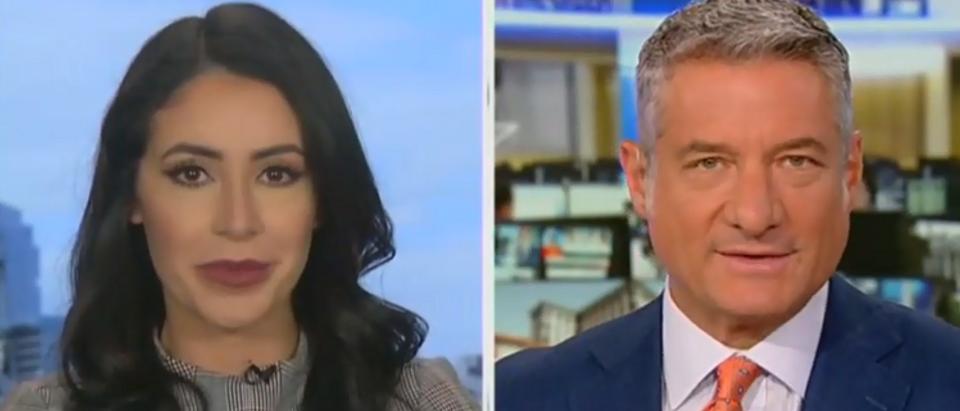 Anna Paulina and Rick Leventhal share a cringeworthy segment (Fox News screengrab - America's Newsroom)