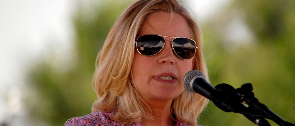 U.S. Senate candidate Liz Cheney speaks to voters during a Republican and Tea Party gathering in Emblem, Wyoming Aug. 24, 2013. REUTERS/Ruffin Prevost