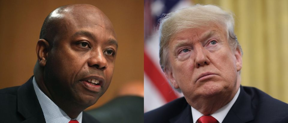 Tim Scott will oppose a Trump judicial nominee. Mark Wilson/Getty Images and Justin Sullivan/Getty Images