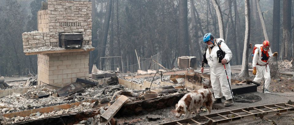Trish Moutard (C), of Sacramento, searches for human remains with her cadaver dog, I.C., in a house destroyed by the Camp Fire in Paradise, California, U.S., Nov. 14, 2018. REUTERS/Terray Sylvester