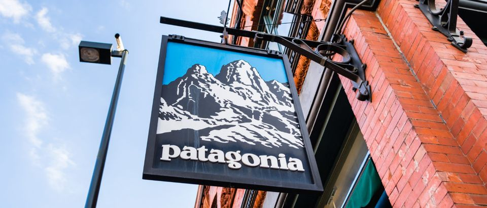 Patagonia sign in front of the store located in downtown Pasadena. Shutterstock.
