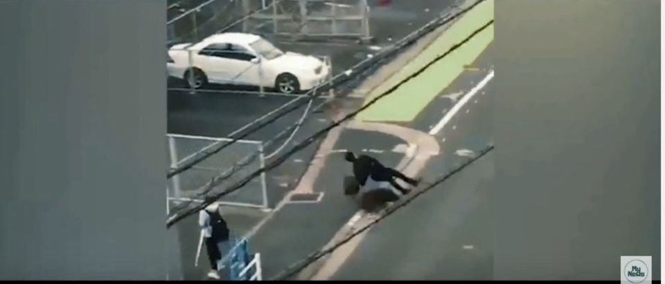 Wild boar hits man in Japan (Photo: YouTube Screenshot)