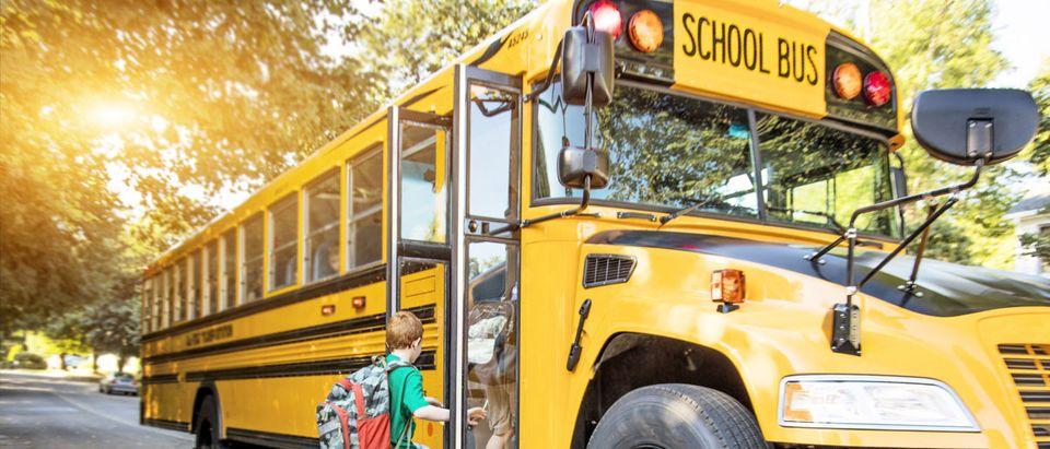 A child boards a school bus. Shutterstock image via user Stuart Monk