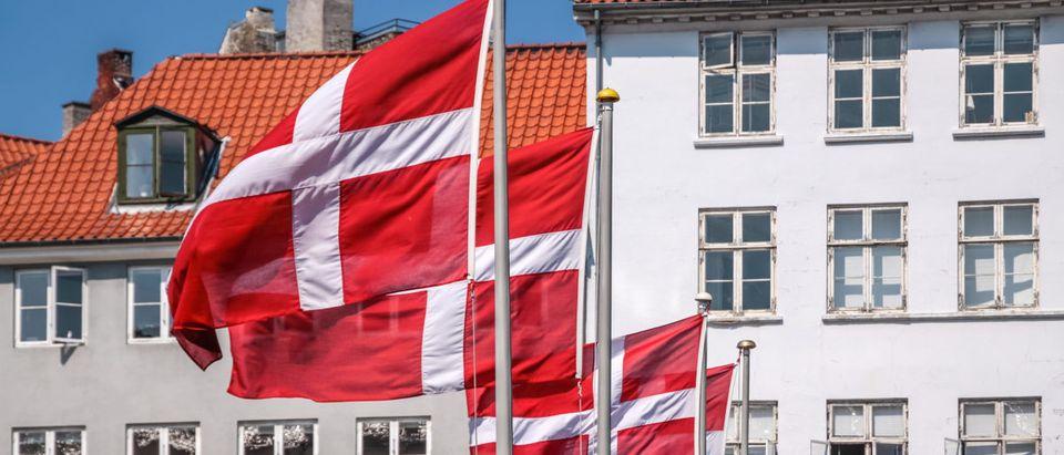 Danish Flags. Shutterstock