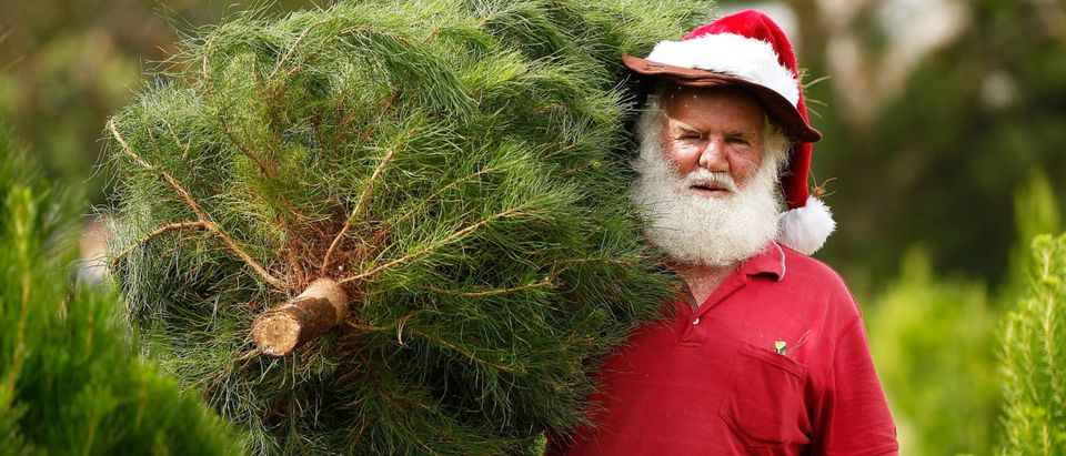 Not all Santas are terrific at their job. Here is a fun mashup of Santa fails, where the man behind the beard is revealed and its awkward to watch. (Brendon Thorne/Getty Images)