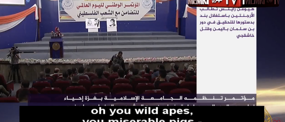 A Palestinian girl reads an anti-Semitic poem (Memri YouTube screenshot)