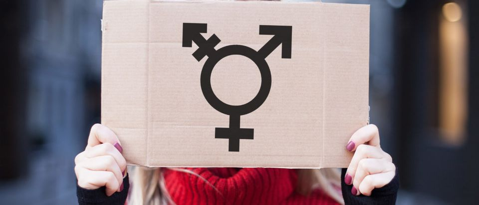 Transgender-Shutterstock