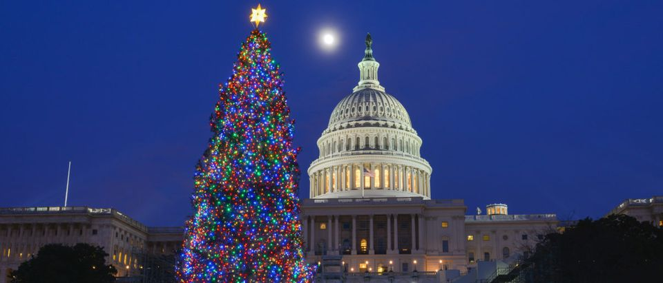 Pictured is the U.S. Capitol Building.(Shutterstock/Orhan Cam)
