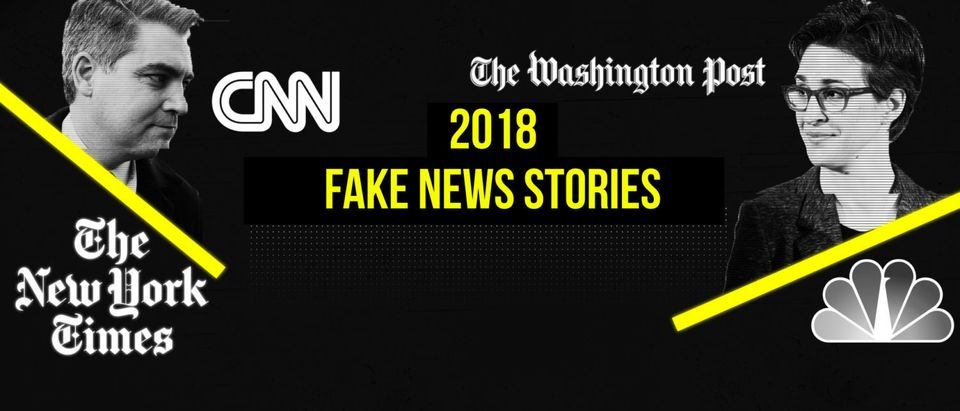 2018 Fake News Stories (The Daily Caller)