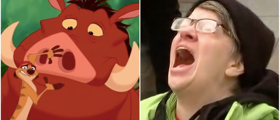 Timon & Pumba and a protester (YouTube screenshots)