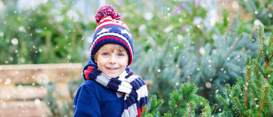 A boy stands by a Christmas tree. Shutterstock photography via Romrodphoto