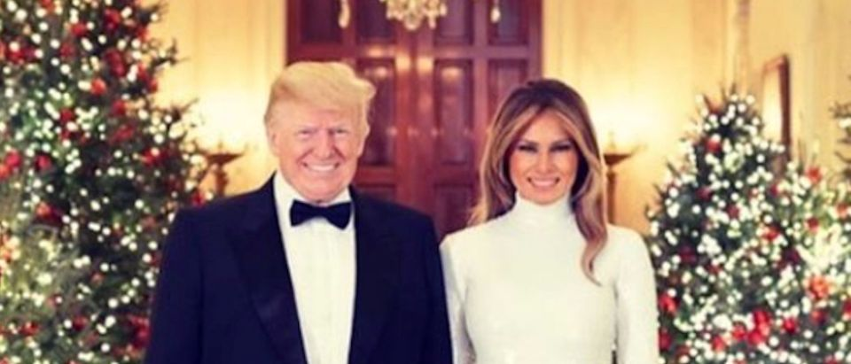 Merry Christmas from President Donald J. Trump and First Lady Melania Trump. @realdonaldtrump & @FLOTUS are seen Saturday, December 15, in their official 2018 Christmas portrait, in the Cross Hall of the White House in Washington, D.C. (Official White House Photo by Andrea Hanks)