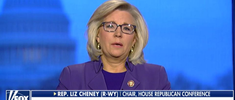 Rep. Liz Cheney Fox News screenshot.