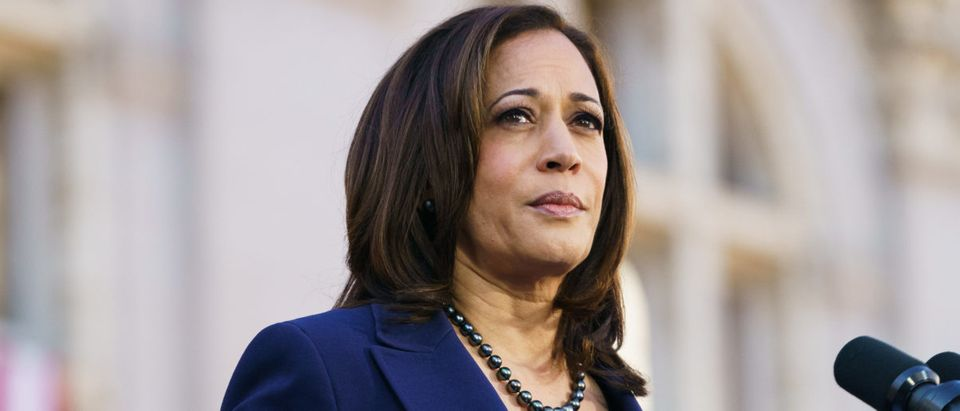 Sen. Kamala Harris speaks to her supporters during her presidential campaign launch rally. (Mason Trinca/Getty Images)
