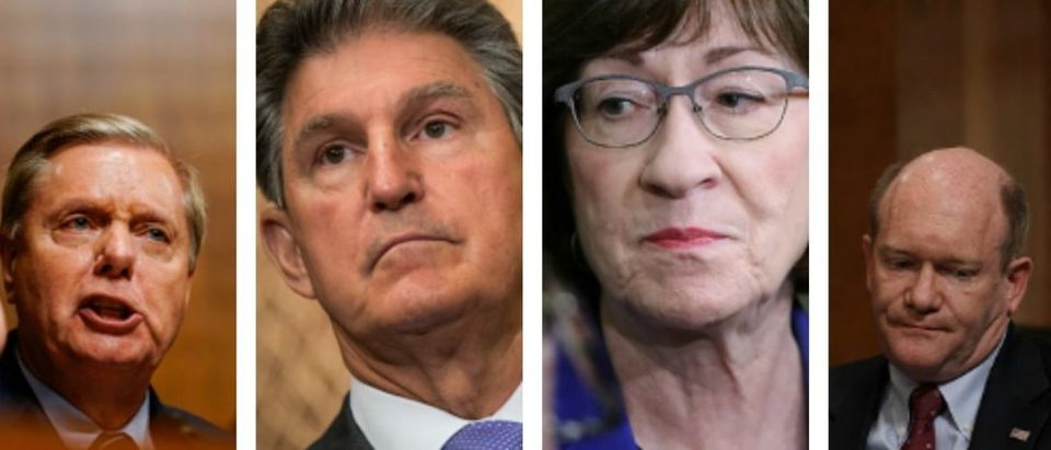 A group of Republican and Democratic senators are teaming up to put together a letter to send to President Donald Trump, asking him to reopen the government. PicMonkey Collage:Photo by Melina Mara-Pool:Getty Images & Alex Wong:Getty Images & Drew Angerer:Getty Images & Win McNamee:Getty Images