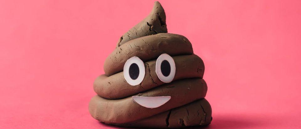 Poop-Shutterstock