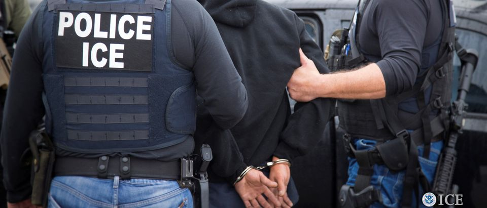U.S. Immigration and Customs Enforcement (ICE) - Charles Reed/U.S. Immigration and Customs Enforcement via REUTERS
