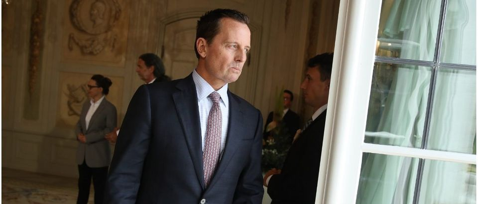 U.S. Ambassador Richard Grenell