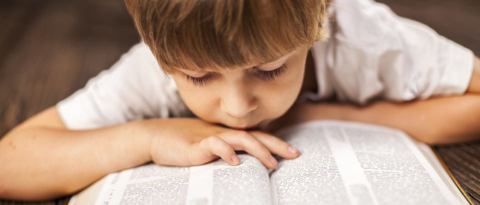 A boy is studying the Bible. (Anelina/Shutterstock)