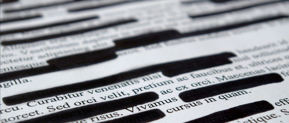 A page of text is partially redacted. Shutterstock image via user Studio_Loona