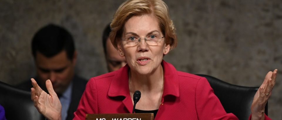 Senator Warren Questions Panelists Testifying Before Senate Armed Services Subcommittees on the Military Housing Privatization Initiative in Washington