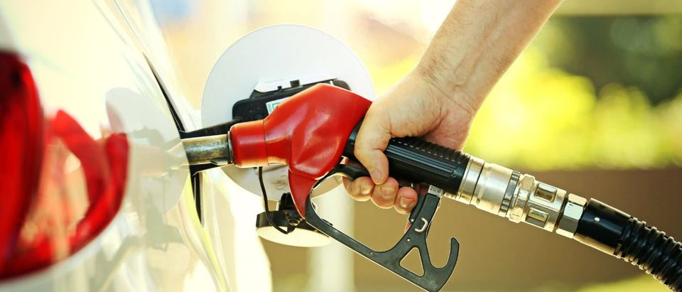 Hand refilling the car with fuel at the refuel station. Shutterstock