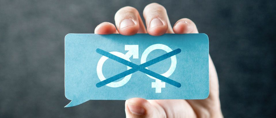 Harvard moves to dismiss complaints about its single-gender policy. SHUTTERSTOCK/ Tero Vesalainen