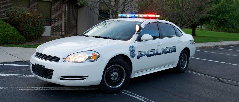 Police Car (Shutterstock/Brad Sauter)