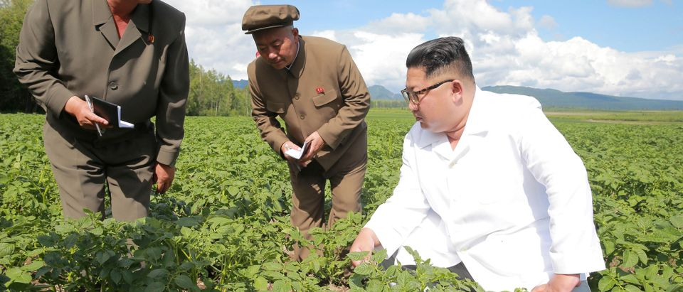North Korea leader Kim Jong Un inspects Chunghung farm in Samjiyon County in this undated photo released by North Korea's Korean Central News Agency (KCNA) on July 10, 2018