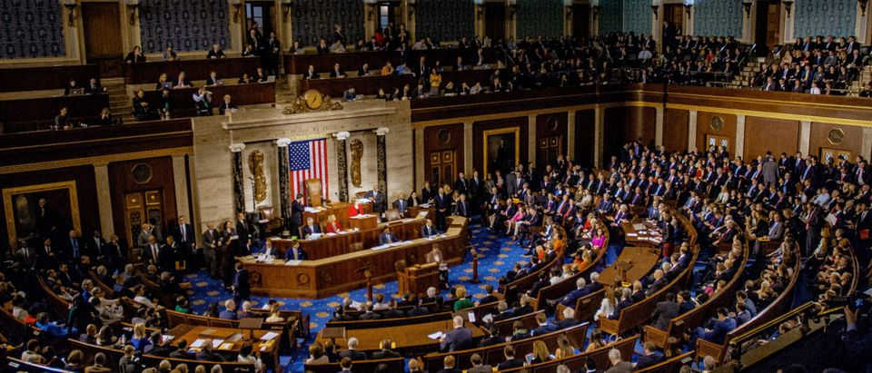 U.S. House of Representatives [Shutterstock/Mark Reinstein]