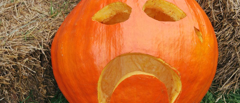 Jail Time For Trick-Or-Treaters: Chesapeake Considers Amending Infamous Policy/ Shutterstock/ By Mellimage