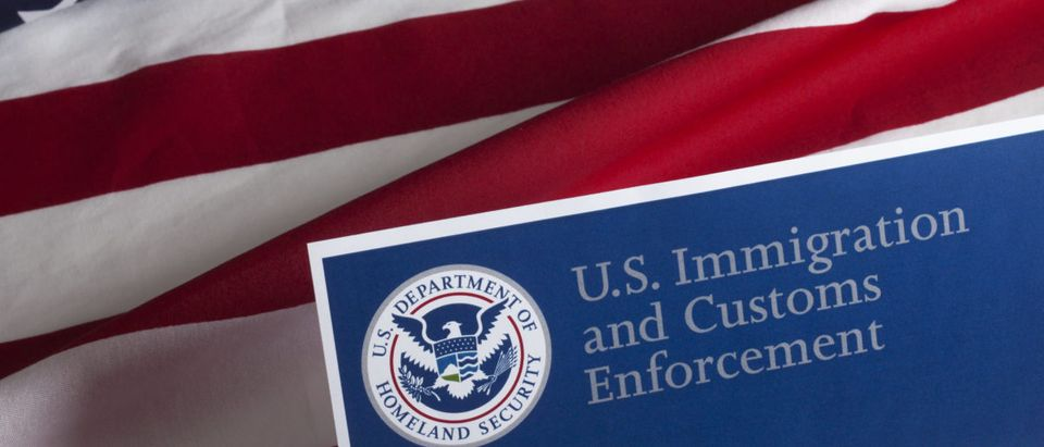 An image displays text that reads U.S. Immigration and Customs Enforcement. Shutterstock image via user danielfela