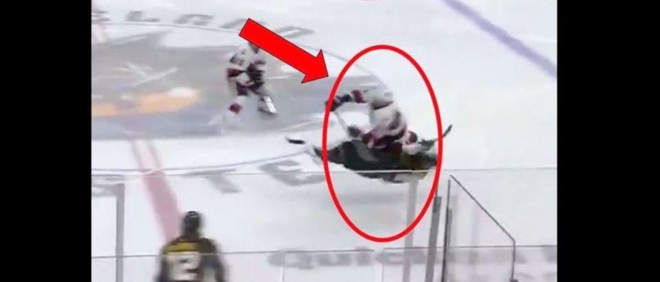 AHL Hit (Credit: Screenshot/Twitter Video https://twitter.com/SensProspects/status/1104197852329316352)