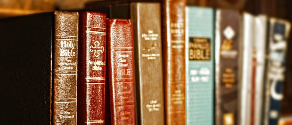 Bibles (Shutterstock/ Lincoln Rogers)