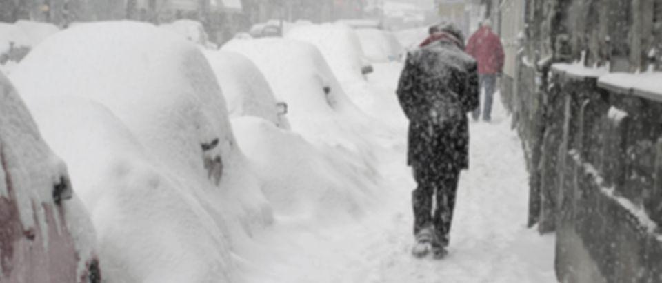 Blizzard, lots of snow (Shutterstock/Zoran Ras)
