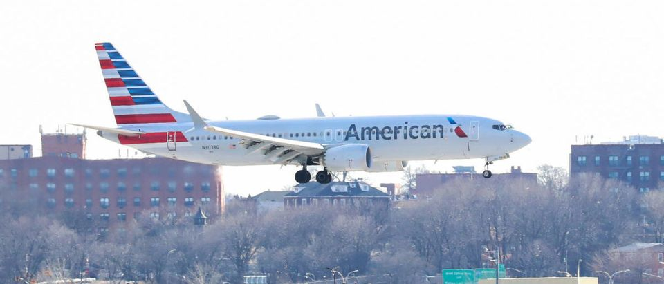 An American Airlines Boeing 737 Max 8, on a flight from Miami to New York City, comes in for landing at LaGuardia Airport in New York, U.S., March 12, 2019. REUTERS/Shannon Stapleton