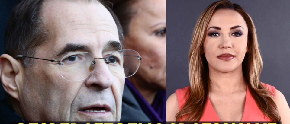 Right: Jerry Nadler in front of Brooklyn Metropolitan Detention Center to protest lack of heat & electricity for inmates February 3 2019, Left: Stephanie Hamill, Daily Caller