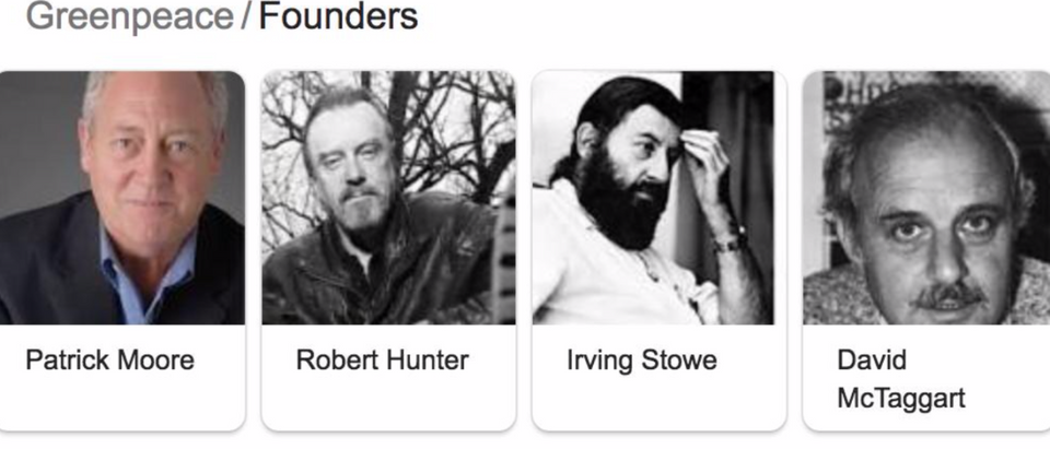 Google search results shows Greenpeace founders. Screen Shot/Google