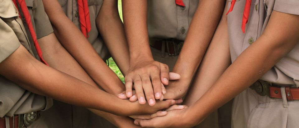 Boy Scouts of America suggested creating a sex offender registry for suspected sex offenders as a way of combatting sexual abuse within youth organizations.Shutterstock, Sajee Rod.