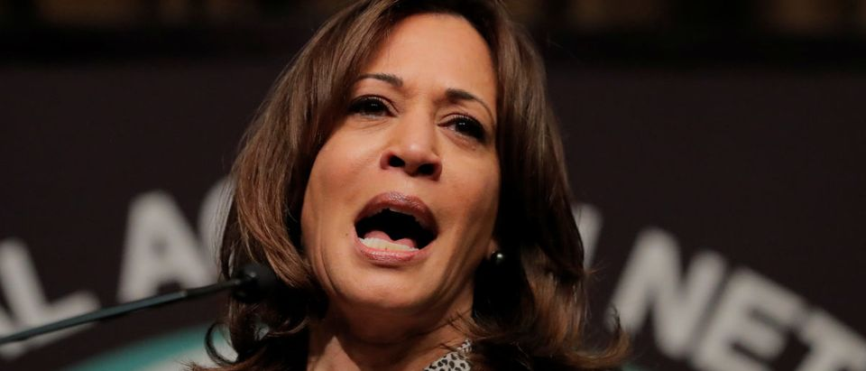 U.S. 2020 Democratic presidential candidate and U.S. Senator Kamala Harris speaks at the 2019 National Action Network National Convention in New York