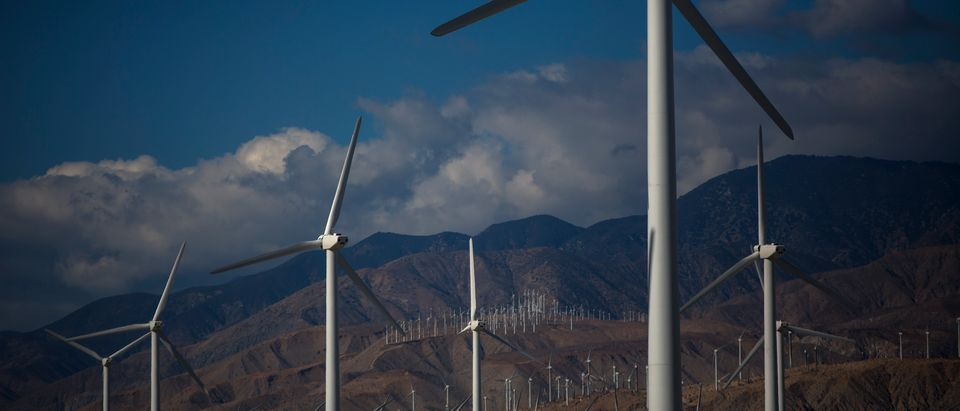 Wind turbines are seen in Palm Springs, California December 20, 2013. REUTERS/Eric Thayer.
