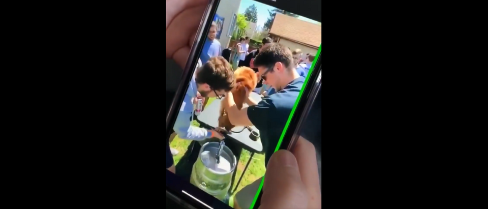 A frat was suspended after a video showed a dog being forced to drink beer. Screenshot/ Twitter/@kristinaproscia