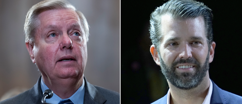 Lindsey Graham (left - Alex Edelman, Getty) Donald Trump Jr. (right - Manny Carabel, Getty)