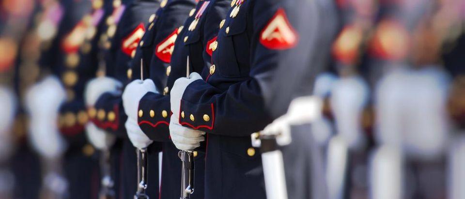 Marine-Shutterstock