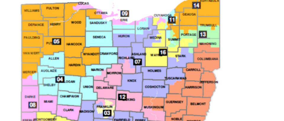 Ohio's congressional district map. (Screenshot/Philip Randolph Institute v. Householder opinion)