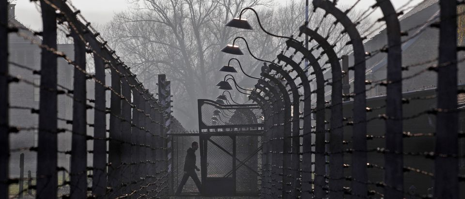 A visitor walks between electric barbed-wired fences at the Auschwitz-Birkenau memorial and former concentration camp November 18, 2013. REUTERS/Kacper Pempel