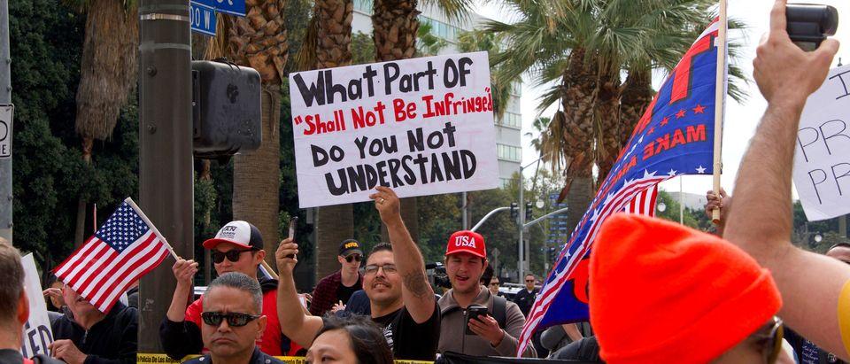 Second Amendment Protesters