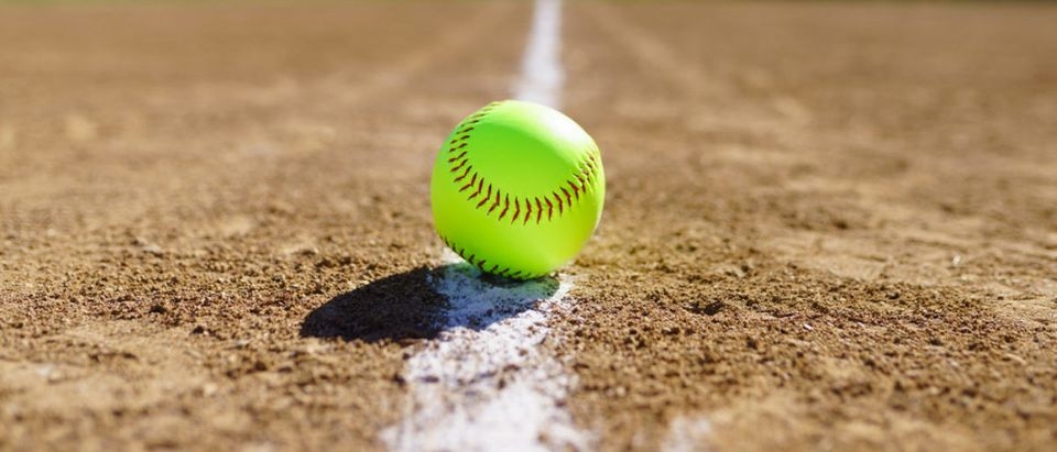 Softball (Credit: Shutterstock/Peieq)