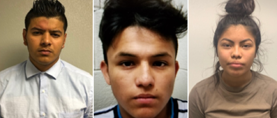 MS-13 members allegedly killed a 14-year old girl using a baseball bat and a machete and then disposed her body in a creek, according to Maryland police. (Prince George's County Police Department)