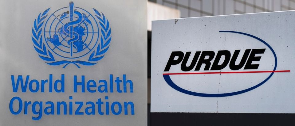who purA bipartisan report from the offices of Reps. Katherine Clark and Hal Rogers demanded answers from the World Health Organization because of its ties to Purdue Pharma May 22, 2019. Michael Passet and Drew Angerer/Getty Imagesdue pharma